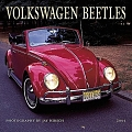 VW - 2001 - Volkswagen Beetles 2001 - 978-0763127756 - [7883]