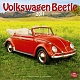 VW miscellaneous - VW Beetle 2011,2011